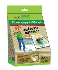 Kit d'élevage de coccinelles et de chrysopes