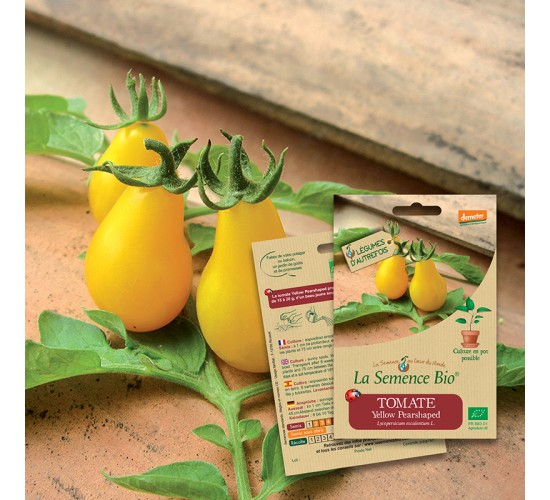 Graines de TOMATE Yellow pearshaped BIO