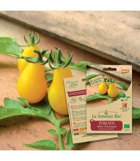Graines de TOMATE Yellow pearshaped BIO