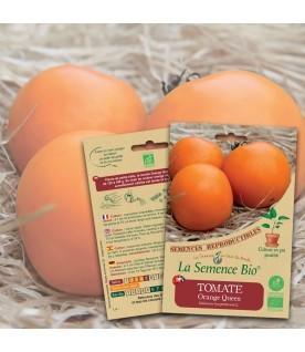 Graines de TOMATE Orange Queen BIO