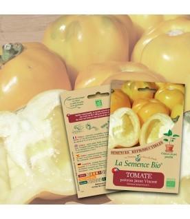 Graines de TOMATE Poivron jaune Vincent BIO
