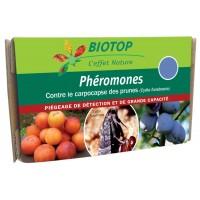 Phéromones Cydia funebrana-Carpocapse des prunes