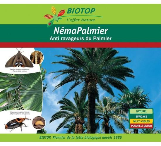 Nématodes contre charançon rouge et papillon palmivore