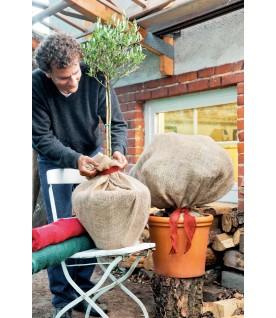 Housse de protection hivernale écru 110 x 100 cm