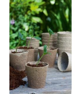 10 pots biodégradables 11 cm