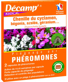 Phéromones contre la pyrale du géranium, cyclamens, bégonia