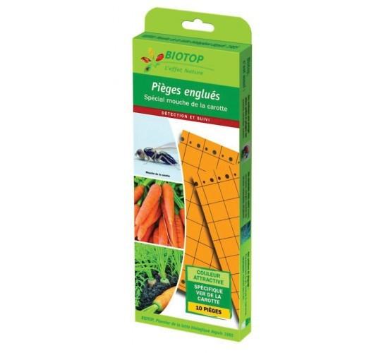 Piège chromatique anglué spéciale mouche de la carotte