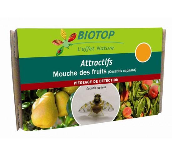 Attractif mouches des fruits