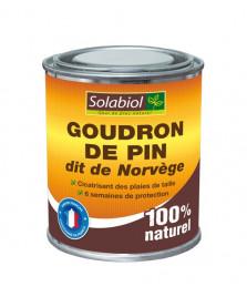Goudron de pin dit de norvège