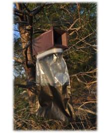Piège à phéromone pour processionnaires du pin et pyrales du buis