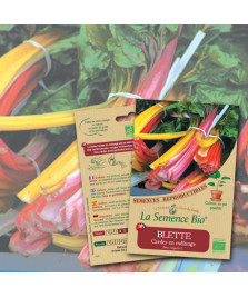 Graines de BLETTE Cardes en mélange Bio