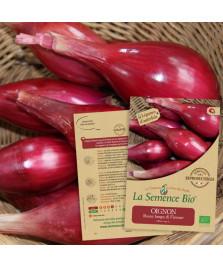 Graines d' OIGNON Rossa lunga di Firenze Bio