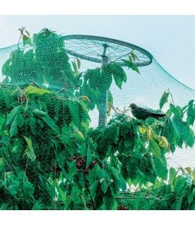 Filet de protection des arbres fruitiers