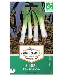 Graines de POIREAUX d'hiver de Saint-Victor BIO