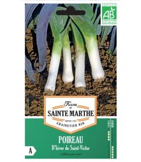 Graines de Poireaux d'hiver de Saint-Victor