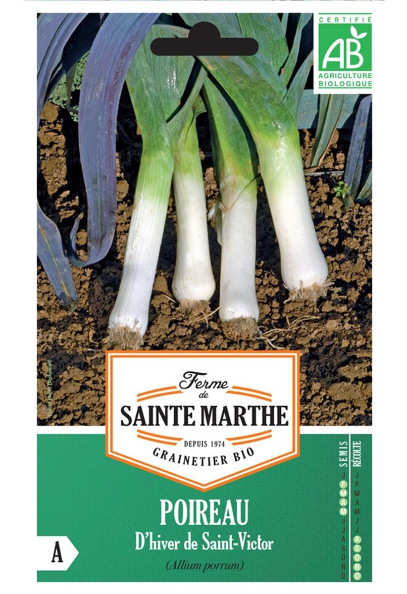 Graines de Poireaux d'hiver de Saint-Victor AB