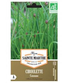 Graines de Ciboulette Commune AB
