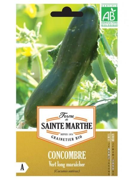 Graines de Concombre Vert long maraîcher AB