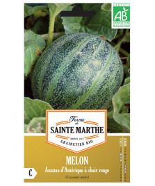 Graines de Melon Ananas d'Amérique à chaire rouge