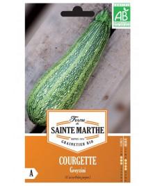 Graines de COURGETTE Greyzini BIO