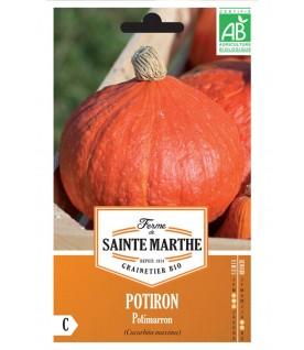 Graines de Potiron Potimarron AB