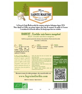 Graines de Haricot Fructidor Beurre Mangetout