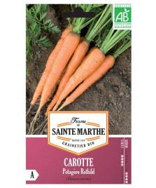 Graines de CAROTTE Potagère Rothild BIO