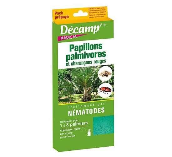 Nématodes contre le charançon rouge du palmier