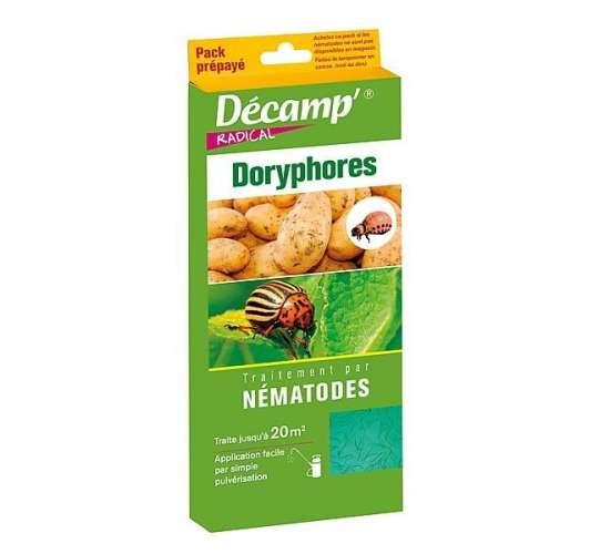 Nématodes contre les larves de doryphores