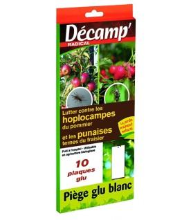 Piège à glu pour pommier et fraisier