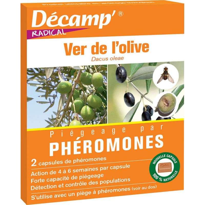 Ph romone contre le ver de l 39 olive - Insecticide mouche de l olive ...