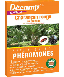 Phéromone contre le charançon rouge du palmier