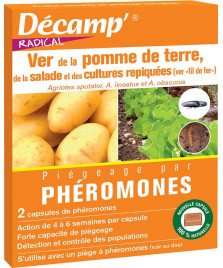 Phéromone ver pomme de terre / cultures repiquées