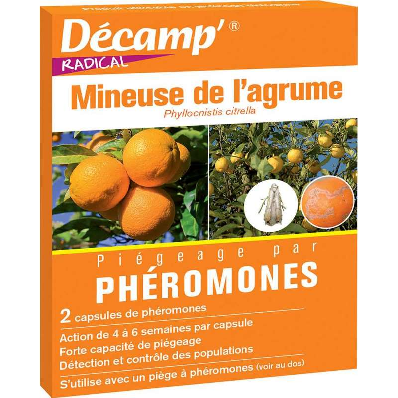Ph romone contre la mineuse de l 39 agrume - La mineuse des agrumes ...