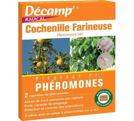 Phéromone contre la cochenille