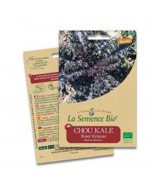 Graines de Chou Kale BIO