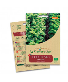 Graines de Chou Kale Halboher BIO