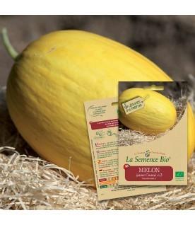 Graines de Melon Jaune Canari 3 BIO