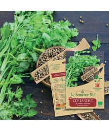 Graines de Coriandre à petites graines BIO