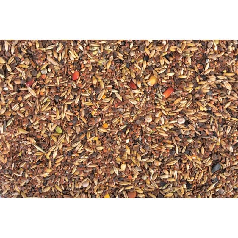 Mix de graines pour oiseaux hiver 1 kg - Graines de tournesol pour oiseaux ...