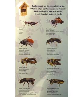 Hotel a insectes a assembler