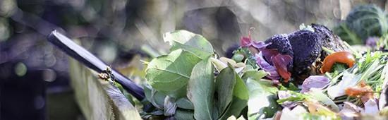 Engrais bio : Vente d'engrais organique biologique