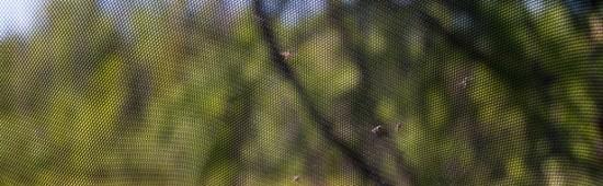 Filet anti insecte pour jardin, arbre, poireaux, voile anti insecte et filets de protection