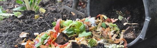 Compostage des déchets organics