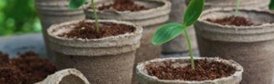 Matériel de semis et plantation - Mon Vert Jardin