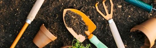 Outillage à main : pelle, scécateurs, plantoirs,