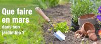 Que faire en mars dans son jardin bio ?